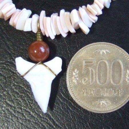 【表示現品】メジロザメの歯と貝殻ビーズのネックレス - BLB-13022