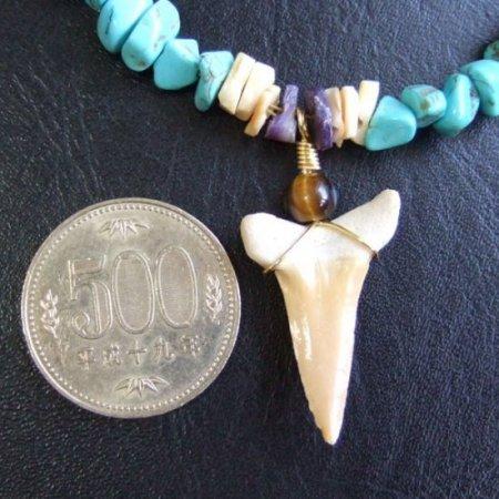 【表示現品】古代シロワニの仲間の歯化石 ビーズブレスレット - STF-16003