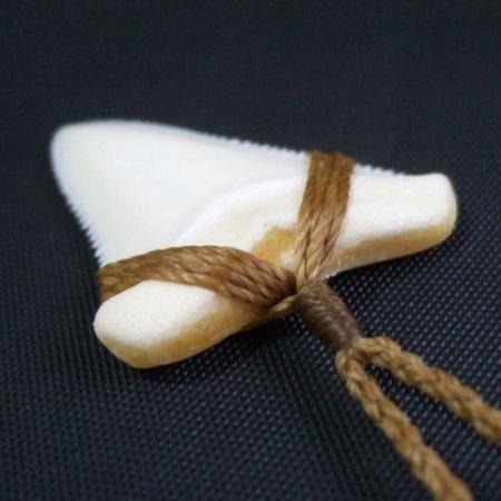 【訳あり現品】4.3cm 本物のホホジロザメの歯ワックスコード編みネックレス - 21130zhb