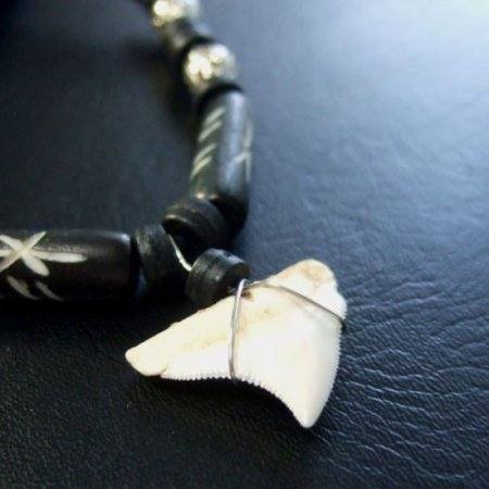 本物のサメの歯ネックレス - 20033etk