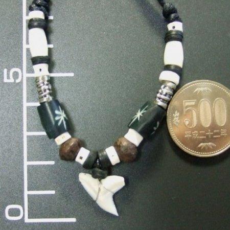 本物のサメの歯ネックレス - 20046etk