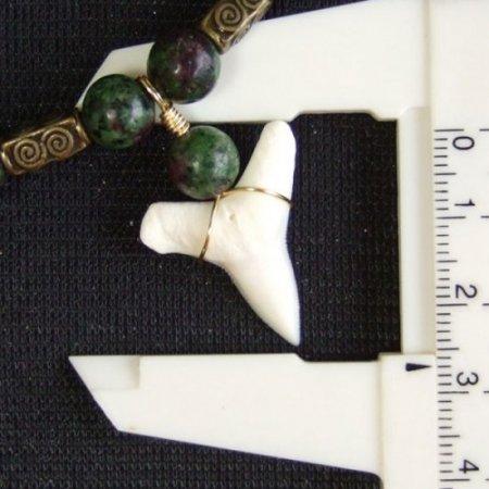 2.5cm メジロザメの歯ネックレス(下あごの歯) - 20871zhb