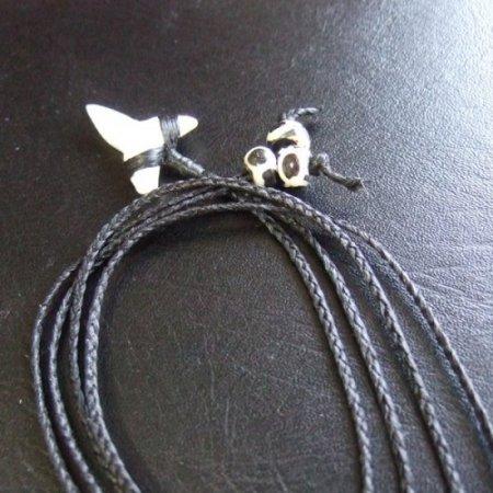 【表示現品】本物のサメの歯(ブル・シャーク)ネックレス - BLN-12031