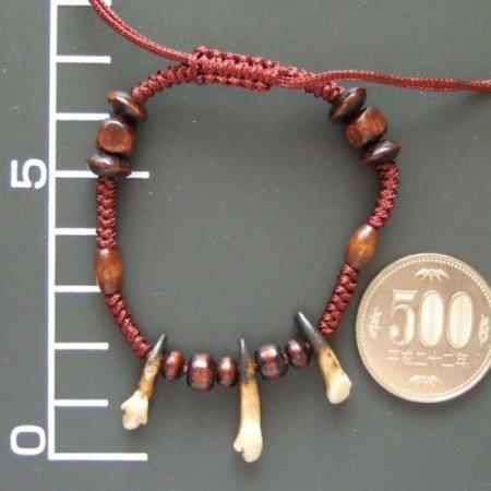 狼歯ブレスレット - 15701chc